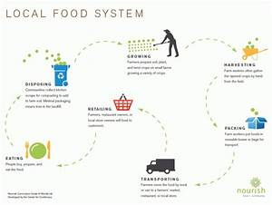 Visualizing Food Systems