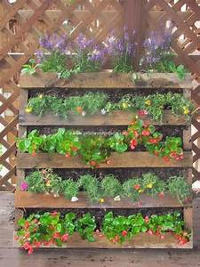 Diy pallet vertical garden projects pallet wood projects for Vertical pallet garden