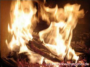 Tipps Kaminofen Richtig Befeuern by Richtig Feuer Machen Im Kaminofen Tipps Gegen Verru 223 Te