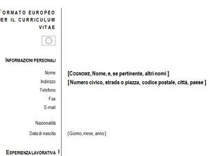curriculum vitae europeo moduli it