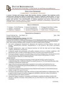 exle it resume summary director education resume sales director lewesmr