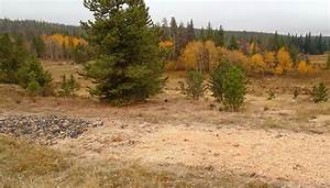 Biochar in Colorado - 0.509 - ExtensionExtension