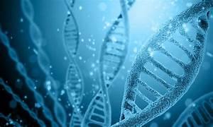 Role Of Genetics In Cf