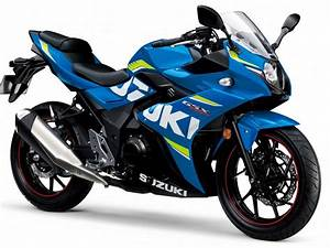 Suzuki Gixxer 250cc India Launch Date, Specs, Image ...