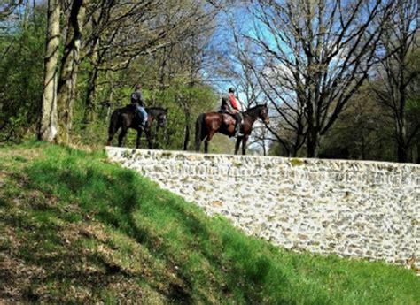 cheval nature promenade  randonnee  cheval dans les