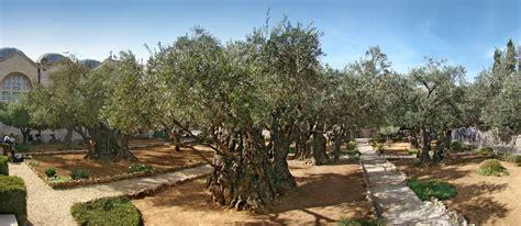 garden of gethsemane gethsemane