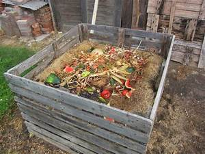 Asseln Im Garten : fragen zur kompostierung ~ Lizthompson.info Haus und Dekorationen