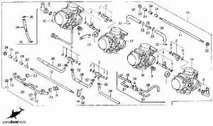 A 2000 Honda Cbr 600 F4 Wiring Diagram  A  Free Engine Image For User Manual Download
