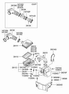 2005 Hyundai Elantra Shield Assembly - Heat