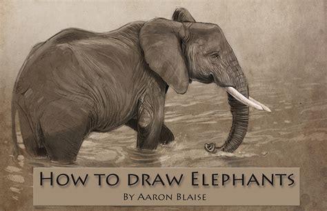 draw elephants tutorial lesson