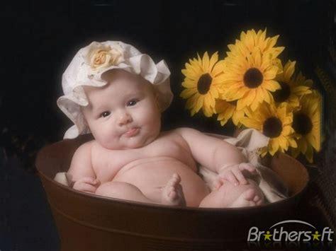 amazing babies screensaver amazing babies
