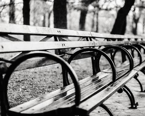Black White Bench by Black And White Central Park Bench In New York City