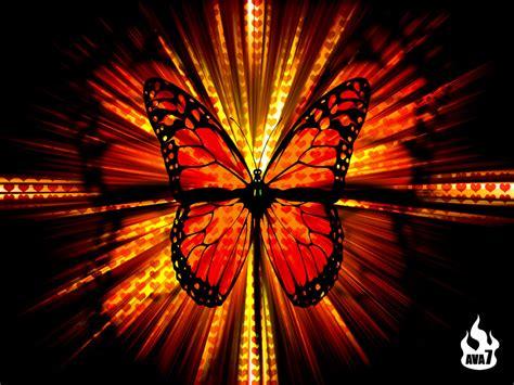 3d Wallpapers Butterfly by Butterfly Wallpaper 3d Wallpaper Nature Wallpaper