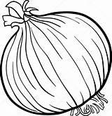 Onion Cartoon Coloring Vegetable Illustration Izakowski Vector Depositphotos Root sketch template