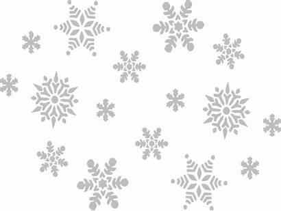 Winter Snow Sky Grey Fall Snowflake Transparent