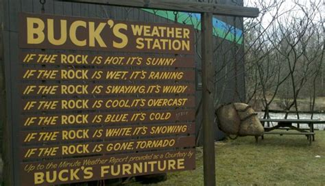wtf whats   wolcotts home goods behemoth bucks