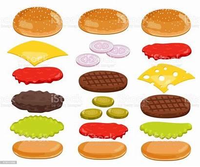 Burger Hamburger Ingredients Ingredientes Sandwich Bun Ingredienti