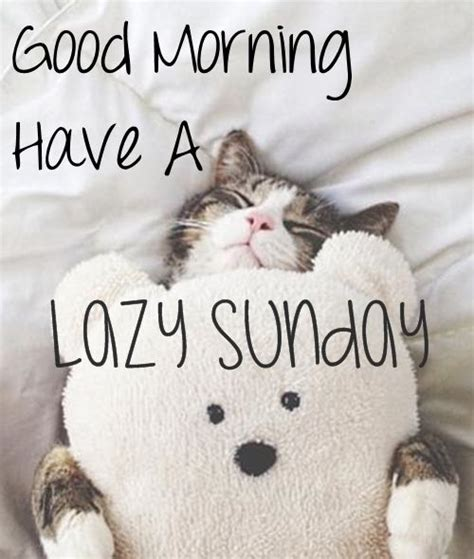 good morning sunday images  quotes happy funday wishes