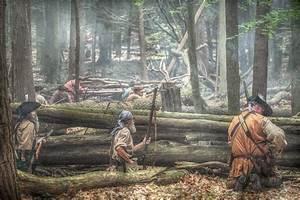 Forest Ambush  By Randy Steele