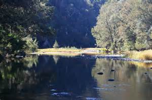 Oxley Wild Rivers National Park