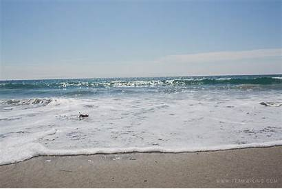 Beach Moss California Landing State Team Doll