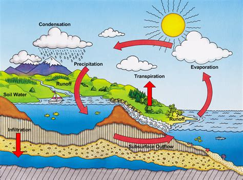 Water Cycle Diagram Earthguide by The Water Cycle Efhs Biology 1 Mr Harrison