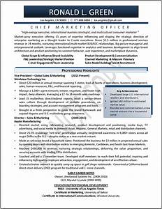 Marketing Resume Examples Marketer Resume Samples