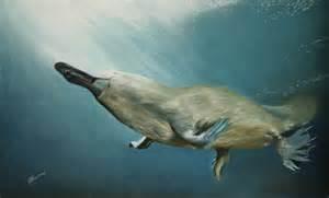 Platypus Painting