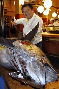 Most Expensive Fish in the World - Alux.com