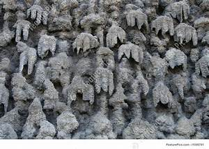 Cave Wall Texture