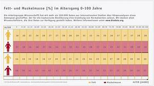 Muskelmasse Berechnen Tabelle : k rperfettanteil statistiken tabellen einflussfaktoren ~ Themetempest.com Abrechnung
