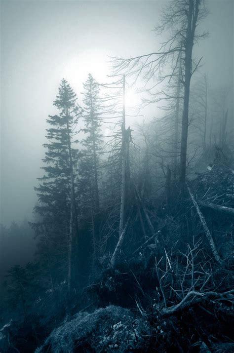 cold misty haze pictures   images  facebook