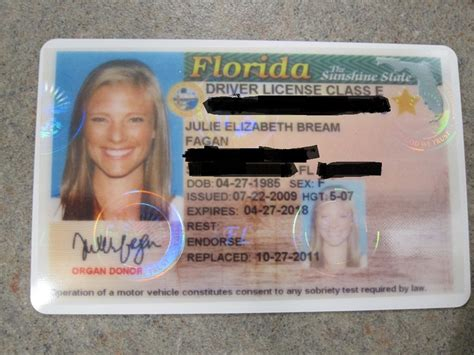 Florida Drivers License Template by A New License Peanut Butter Fingers