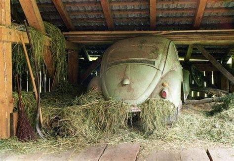 Barn Bug by There Are Bugs In This Barn Volkswagens Vw