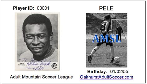 player id cards amodei mountain soccer league
