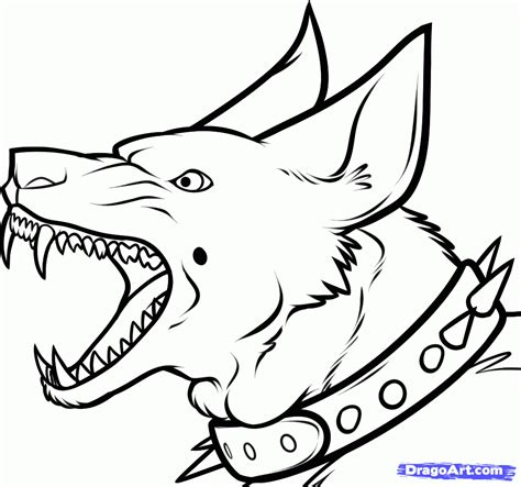draw  guard dog step  pets animals