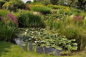 Gartengestaltung Mit Teich : staudengarten gross potrems gartengestaltung wildstaudengarten ~ Markanthonyermac.com Haus und Dekorationen