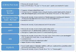 Questionnaires Reported In The Literature For Pain