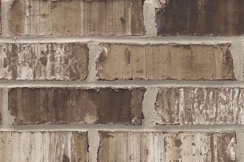 sable oak acme brick brick masonry brown brick