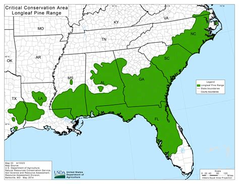 range of american alligator range of american alligator 28 images pin by animal wonders on american alligator american