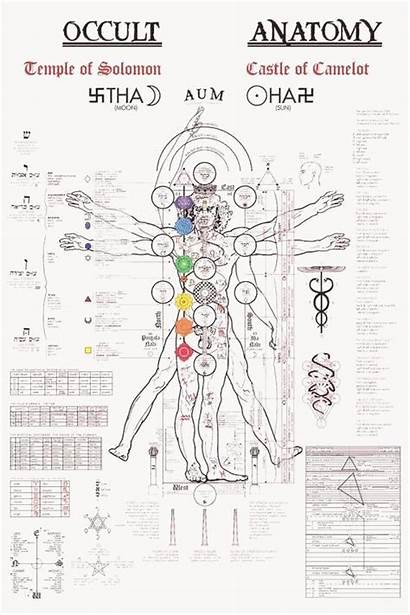 Dawn Golden Tree Kabbalah Alchemy Anatomy Occult