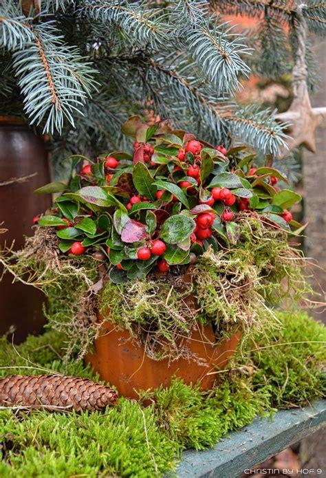 Gartendeko Winter by Quaste Aus Kiefernadeln Nat 252 Rliche Gartendeko Im Winter