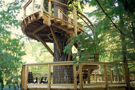 House In Tree by Microsoft Built A Treehouse For Their Employees