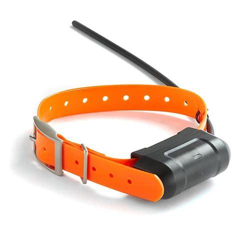 dog supplies tracking collars hunting dog supplies