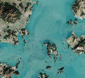 Fascinating satellite photos of seaweed farms in south for Fascinating satellite photos of seaweed farms in south korea