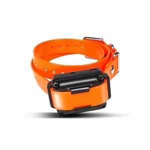 dogtra uk the worlds finest electronic dog training collars With electronic dog training collars