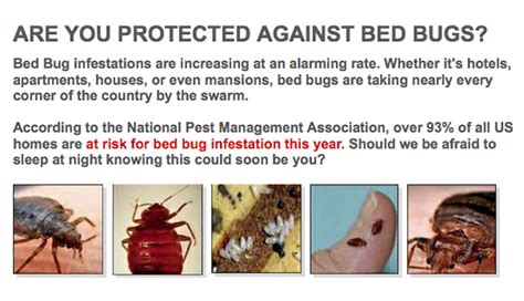 Bedroom Guardian by 15 Best Ways To Get Rid Of Ants In House Naturally