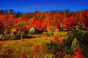 Autumn Barn Scene Painting