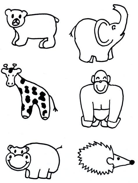 pictures  zoo animals  draw pictures  nnature