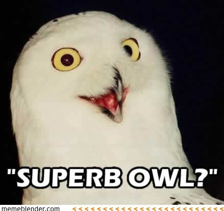 Superb Owl Meme - it s super bowl time going as planned